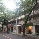 1階路面店!貸店舗、貸事務所!人気の桜通り沿い!